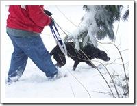 blizzard_20080308_09