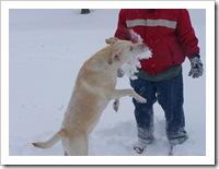 blizzard_20080308_16